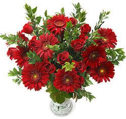 5 adet kirmizi gül 5 adet gerbera aranjmani  Siirt İnternetten çiçek siparişi