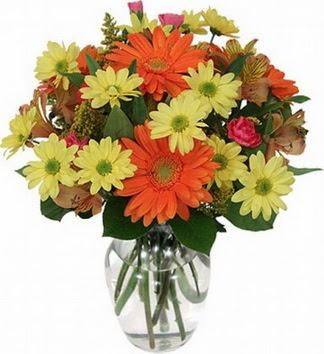 Siirt internetten çiçek siparişi  vazo içerisinde karışık mevsim çiçekleri