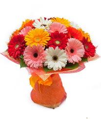 Renkli gerbera buketi  Siirt çiçekçiler