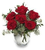 Vazo içerisinde 5 adet kırmızı gül  Siirt çiçek gönderme sitemiz güvenlidir