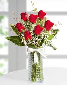 Cam vazoda 7 adet kırmızı gül  Siirt online çiçekçi , çiçek siparişi