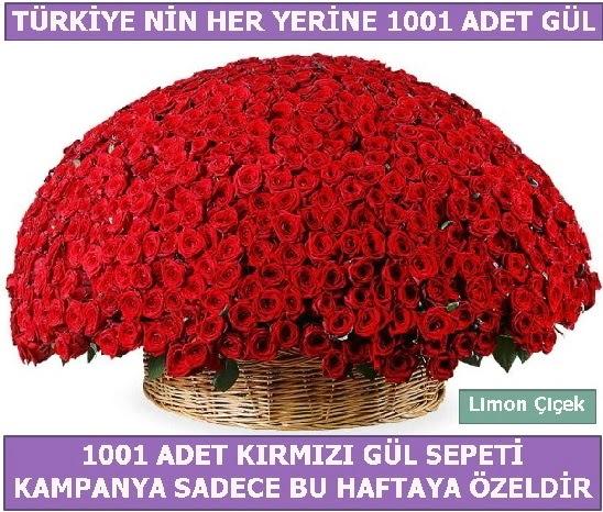1001 Adet kırmızı gül Bu haftaya özel  Siirt çiçek online çiçek siparişi