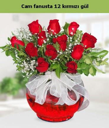 Cam içerisinde 12 adet kırmızı gül  Siirt çiçek gönderme