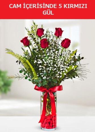 Cam içerisinde 5 adet kırmızı gül  Siirt çiçek yolla