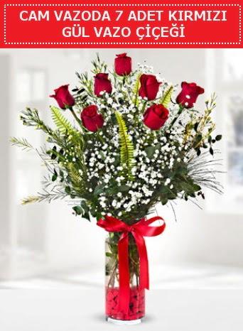 Cam vazoda 7 adet kırmızı gül çiçeği  Siirt çiçek servisi , çiçekçi adresleri