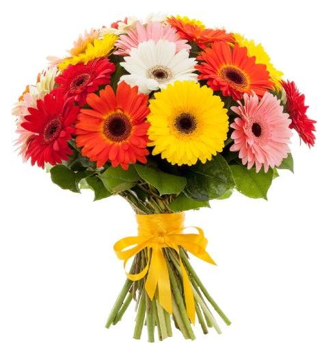 Gerbera demeti buketi  Siirt yurtiçi ve yurtdışı çiçek siparişi