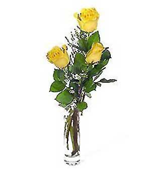 Siirt çiçek satışı  3 adet kalite cam yada mika vazo gül