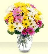 Siirt çiçek satışı  mevsim çiçekleri mika yada cam vazo