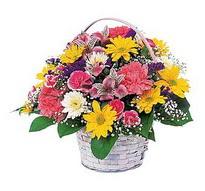 Siirt online çiçekçi , çiçek siparişi  mevsim çiçekleri sepeti özel