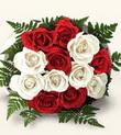 Siirt online çiçekçi , çiçek siparişi  10 adet kirmizi beyaz güller - anneler günü için ideal seçimdir -