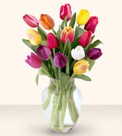 Siirt çiçekçi telefonları  13 adet cam yada mika vazoda laleler