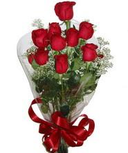 9 adet kaliteli kirmizi gül   Siirt anneler günü çiçek yolla