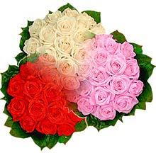 3 renkte gül seven sever   Siirt online çiçekçi , çiçek siparişi