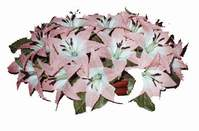 yapay karisik çiçek sepeti   Siirt çiçek gönderme sitemiz güvenlidir