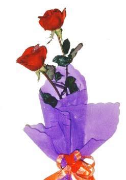 2  adet kirmizi gül buketi   Siirt online çiçekçi , çiçek siparişi