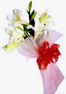 Siirt online çiçekçi , çiçek siparişi  ince vazoda gerbera ve ayi