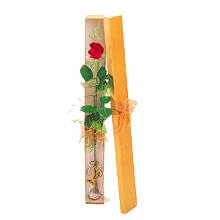 ince  kutuda  1  gül   Siirt çiçek mağazası , çiçekçi adresleri