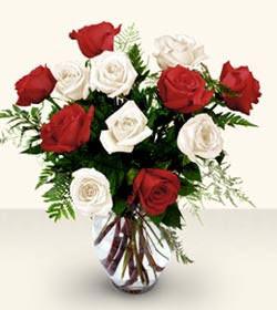 Siirt çiçek siparişi sitesi  6 adet kirmizi 6 adet beyaz gül cam içerisinde