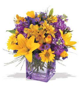 Siirt cicek , cicekci  cam içerisinde kir çiçekleri demeti