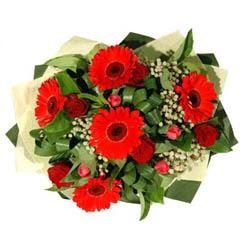 Siirt çiçek yolla , çiçek gönder , çiçekçi    5 adet kirmizi gül 5 adet gerbera demeti