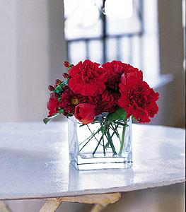 Siirt çiçek yolla , çiçek gönder , çiçekçi   kirmizinin sihri cam içinde görsel sade çiçekler
