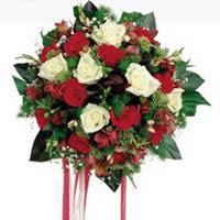 Siirt çiçek yolla , çiçek gönder , çiçekçi   6 adet kirmizi 6 adet beyaz ve kir çiçekleri buket