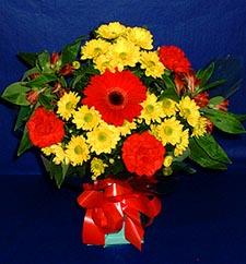 Siirt çiçek yolla , çiçek gönder , çiçekçi   sade hos orta boy karisik demet çiçek