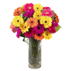 KARISIK GERBERALARDAN CAM VAZO TANZIMI  Siirt uluslararası çiçek gönderme