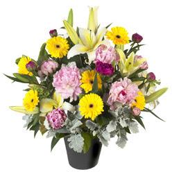 karisik mevsim çiçeklerinden vazo tanzimi  Siirt çiçek siparişi sitesi
