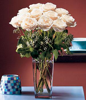 Siirt internetten çiçek siparişi  Cam yada mika vazo içerisinde 12 gül
