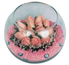 Siirt çiçek gönderme  cam fanus içerisinde 10 adet gül