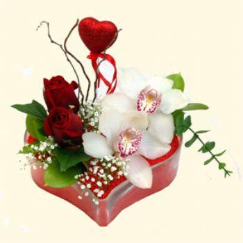 Siirt internetten çiçek siparişi  1 kandil orkide 5 adet kirmizi gül mika kalp