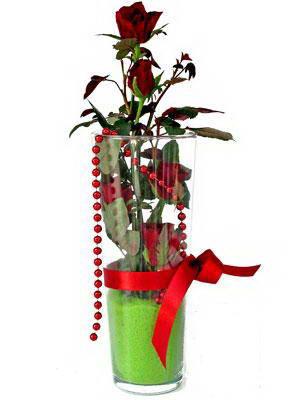 Siirt ucuz çiçek gönder  Cam yada mika içerisinde 9 adet kirmizi gül - sevdiklerinize özel