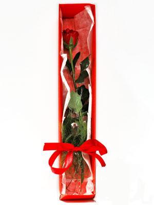 Siirt 14 şubat sevgililer günü çiçek  1 adet kutuda gül