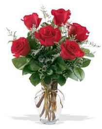 Siirt çiçek servisi , çiçekçi adresleri  7 adet kirmizi gül cam yada mika vazoda sevenlere