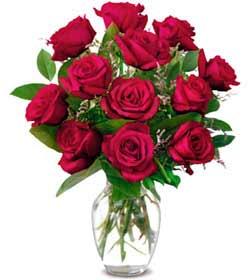 Siirt ucuz çiçek gönder  1 düzine kirmizi gül sevenlere özel vazo gülleri