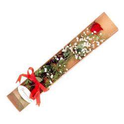 Siirt online çiçekçi , çiçek siparişi  Kutuda tek 1 adet kirmizi gül çiçegi