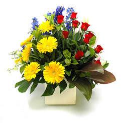 Siirt ucuz çiçek gönder  9 adet gül ve kir çiçekleri cam yada mika vazoda