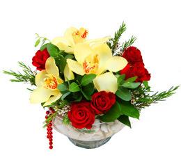 Siirt kaliteli taze ve ucuz çiçekler  1 adet orkide 5 adet gül cam yada mikada