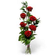 Siirt çiçek siparişi sitesi  mika yada cam vazoda 6 adet essiz gül