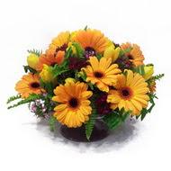 gerbera ve kir çiçek masa aranjmani  Siirt çiçek , çiçekçi , çiçekçilik