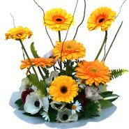 camda gerbera ve mis kokulu kir çiçekleri  Siirt güvenli kaliteli hızlı çiçek