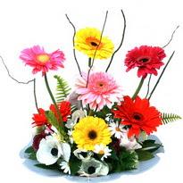 Siirt İnternetten çiçek siparişi  camda gerbera ve mis kokulu kir çiçekleri