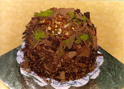 Çikolatali 4 ila 6 kisilik yas pasta  Siirt çiçek servisi , çiçekçi adresleri