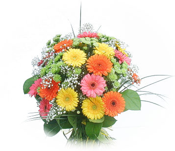 13 adet gerbera çiçegi buketi  Siirt ucuz çiçek gönder