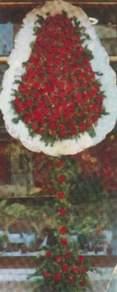 Siirt çiçek servisi , çiçekçi adresleri  dügün açilis çiçekleri  Siirt 14 şubat sevgililer günü çiçek