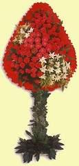 Siirt kaliteli taze ve ucuz çiçekler  dügün açilis çiçekleri  Siirt çiçek siparişi vermek