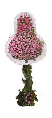 Siirt çiçek yolla , çiçek gönder , çiçekçi   dügün açilis çiçekleri  Siirt çiçek satışı
