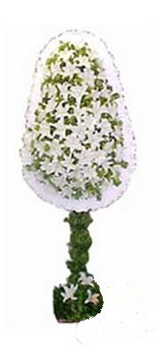 Siirt çiçek yolla  nikah , dügün , açilis çiçek modeli  Siirt ucuz çiçek gönder