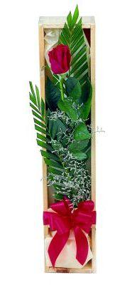 1 adet kutuda kirmizi gül  Siirt çiçek servisi , çiçekçi adresleri